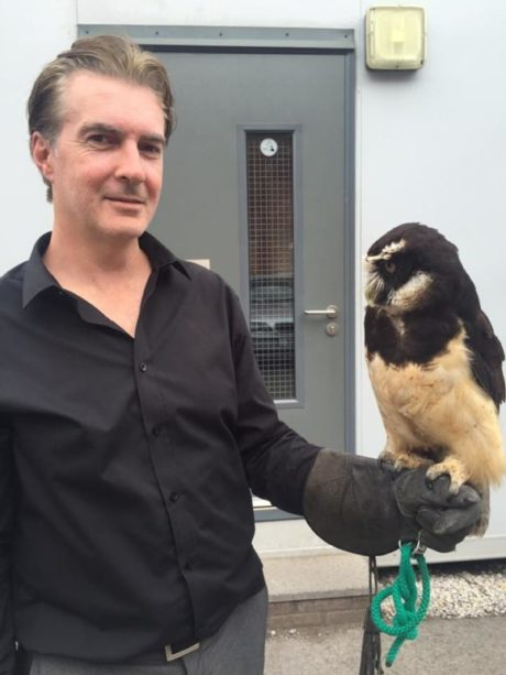Helping Wild Wings Birds of Prey Move Premises